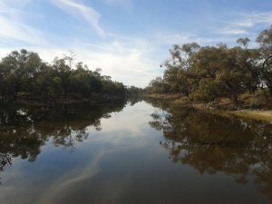 The creek which flows off the Darling, after a good wet season, and fills the lakes