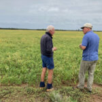 Eric discusses the crop's performance with KPF manager Quentin.