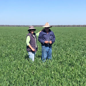 Geoff and Shirl in their recent wheat crop