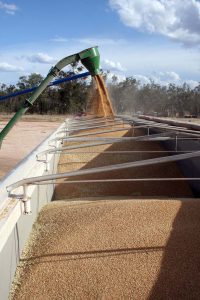 The grain is loaded from silo into the truck.
