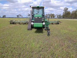 Casey ploughing weeds prior to planting