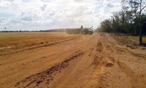 the tractor offloads harvested wheat into the header bin