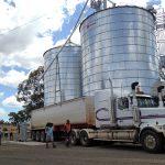 タルボット農場の穀物が製粉所に到着