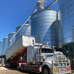 Once wheat is tested the truck takes it to offload into the silos
