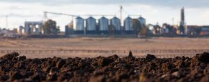 Kialla Mill and rich darling Downs soil