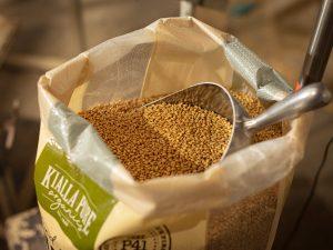 Kialla Wholefoods Organic Wheat Grain