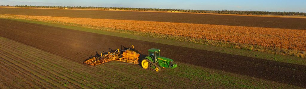 Planting the organic wheat