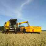 oats being harvested